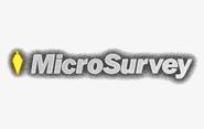 micro-survey